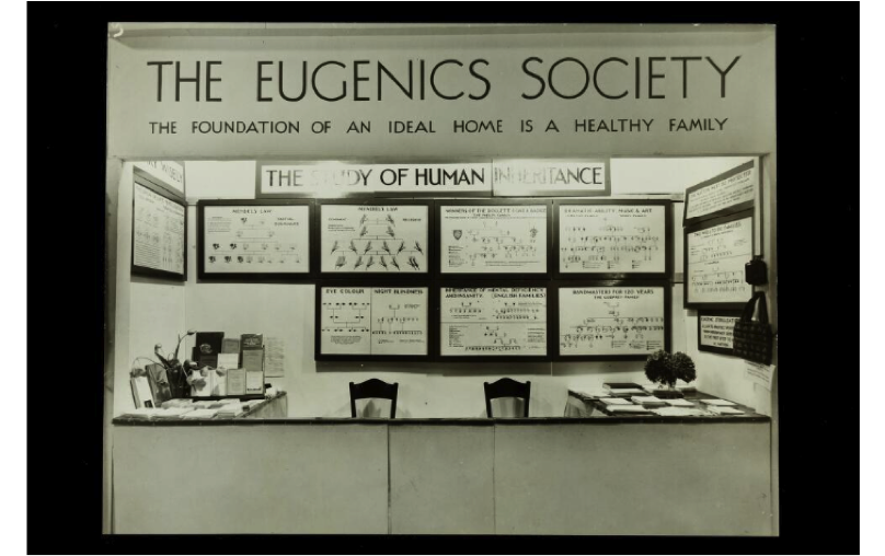 american eugenics society American eugenics refers inter alia to compulsory sterilization laws adopted by over 30 states that led to more than 60,000 sterilizations of disabled individuals many of these individuals were sterilized because of a disability: they were mentally disabled or ill , or belonged to socially disadvantaged groups living on the margins of society.